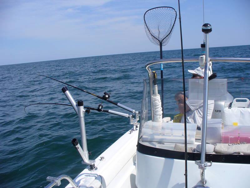 P1010566 jpg for Cisco s sportfishing fish count
